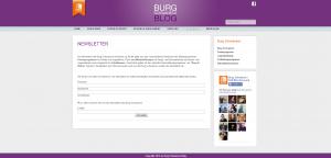 Blog Burg Schwaneck - Screenshot Newsletteranmeldung