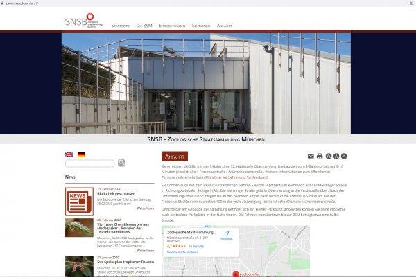 Website ZSM - Screenshot Startseite