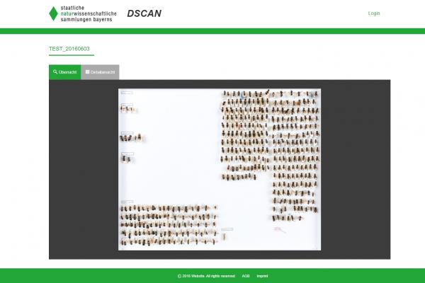 ZSM Screenshot Zoombild Insektenkasten