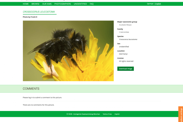 Online Bilddatenbank